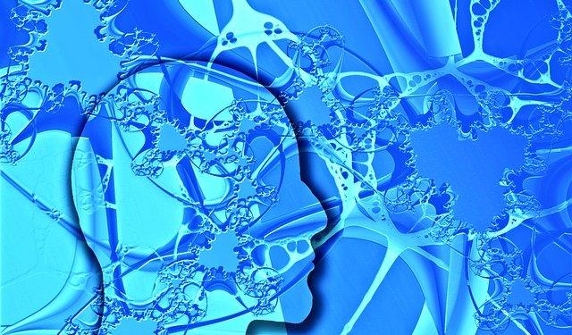 Idea Think Mind Head Blue - Image: Public Domain, Pixabay