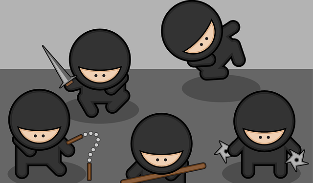 Ninja People - Image: Public Domain, Pixabay
