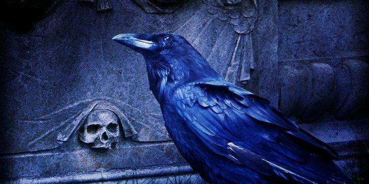 Raven Bird Grave Cemetery Skull Halloween - Image: Public Domain, Pixabay
