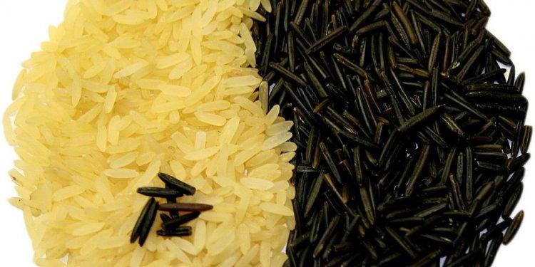 Rice Food Yin Yang Symbol - Image: Public Domain, Pixabay