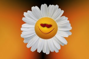 Smiley Flower Happy