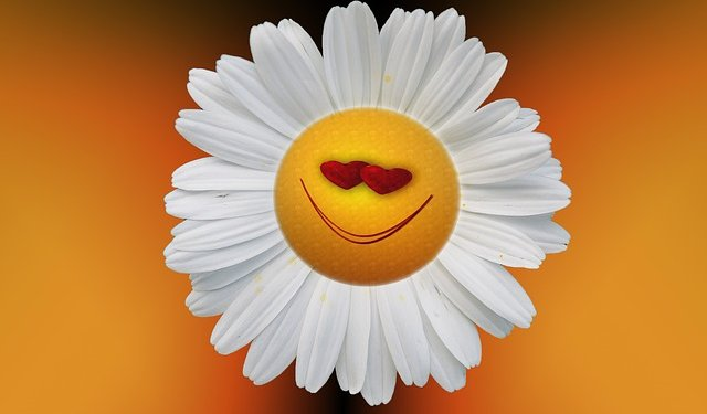 Smiley Flower Happy Image: Public Domain, Pixabay