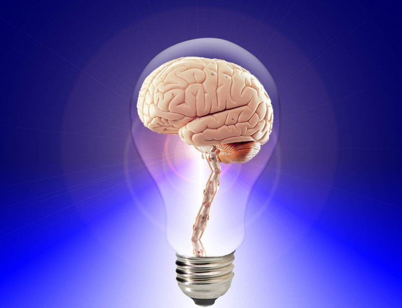Think Brain Idea Light Bulb Image: Public Domain, Pixabay