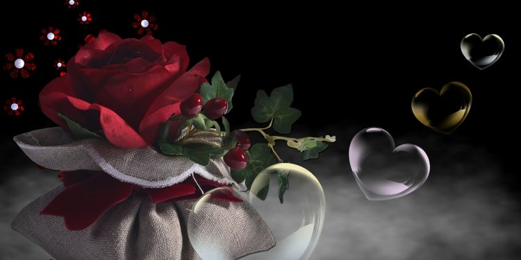 Love Rose Bubbles Flower real love spells