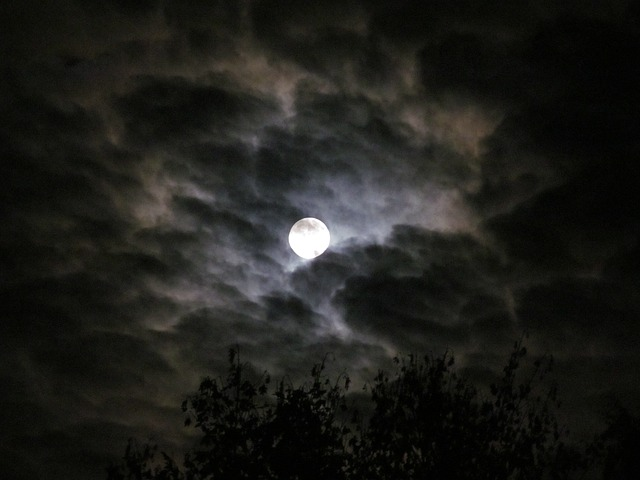 Moon Night Clouds Sky - Image: Public Domain, Pixabay
