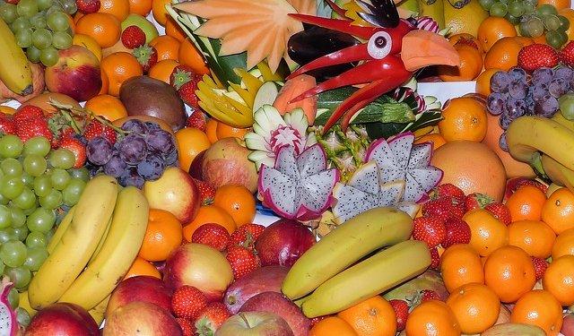 Mixed Fruit Bird - Image: Public Domain, Pixabay