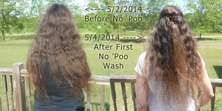 No Poo Hair Day 4 - Image: © Briana Blair