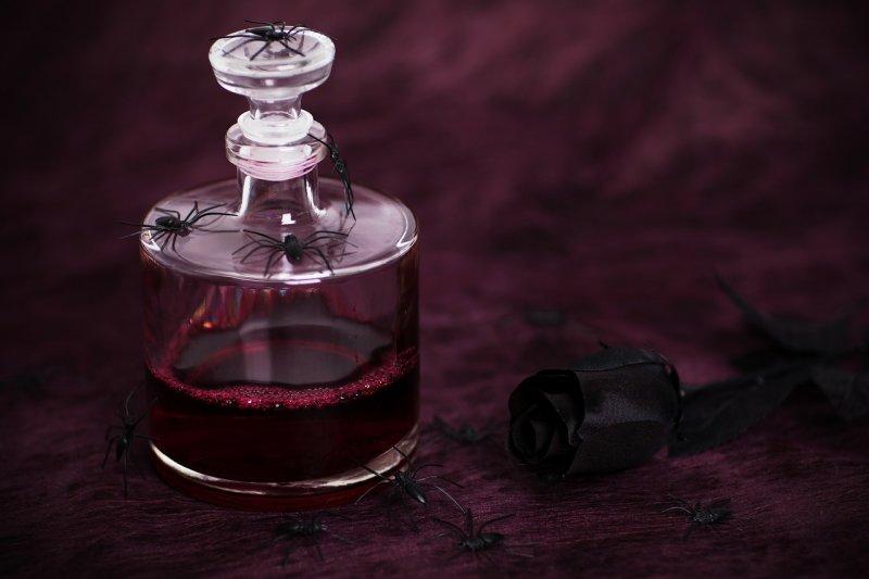Blood Spider Rose Halloween - Image; Public Domain, Pixabay