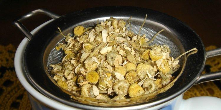 Chamomile Herb Tea - Image: Public Domain, Pixabay