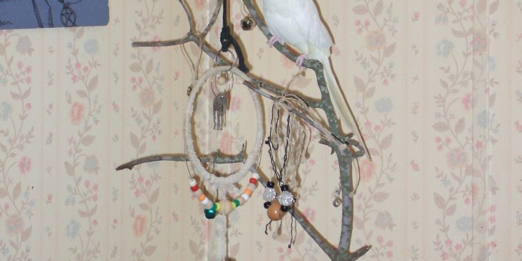Cockatiel Bird Toy Tree - © Briana Blair