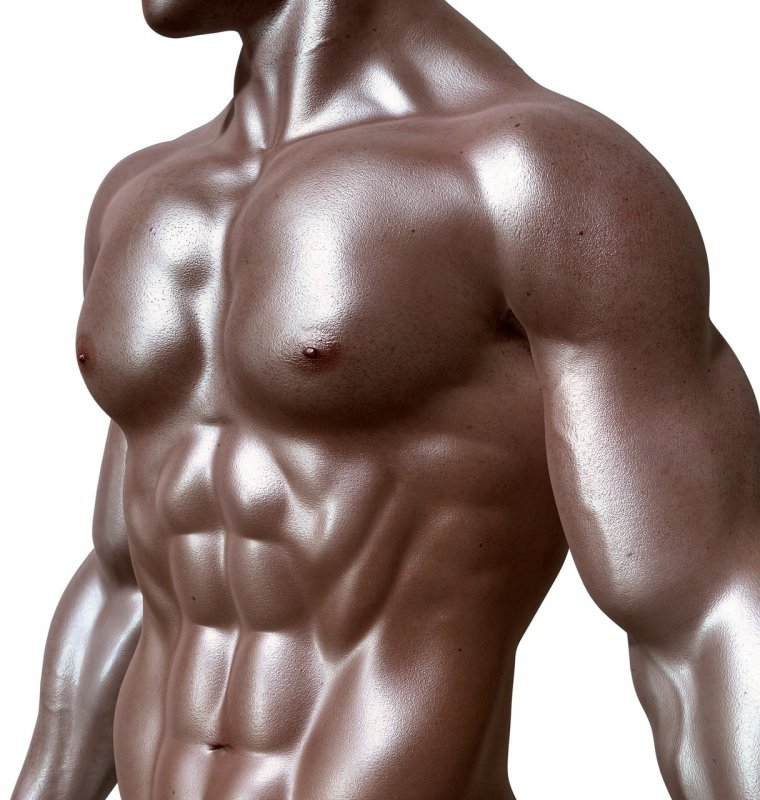 Man Body Chest Muscle - Image: Public Domain, Pixabay