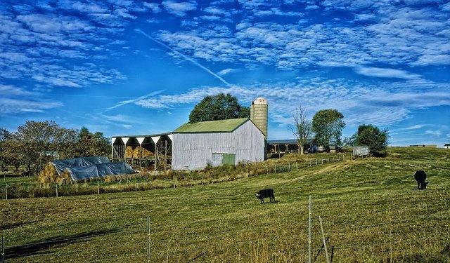 Farm sky Grass Outdoors Barn - Image: Public Domain, Pixabay