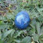 Spirit Egg Craft Project 8 - © Briana Blair