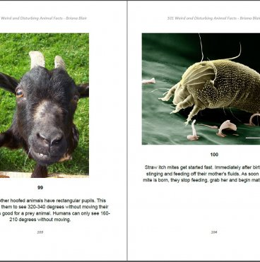 101 Weird and Disturbing Animal Facts by Briana Blair - Nature Ebook 4