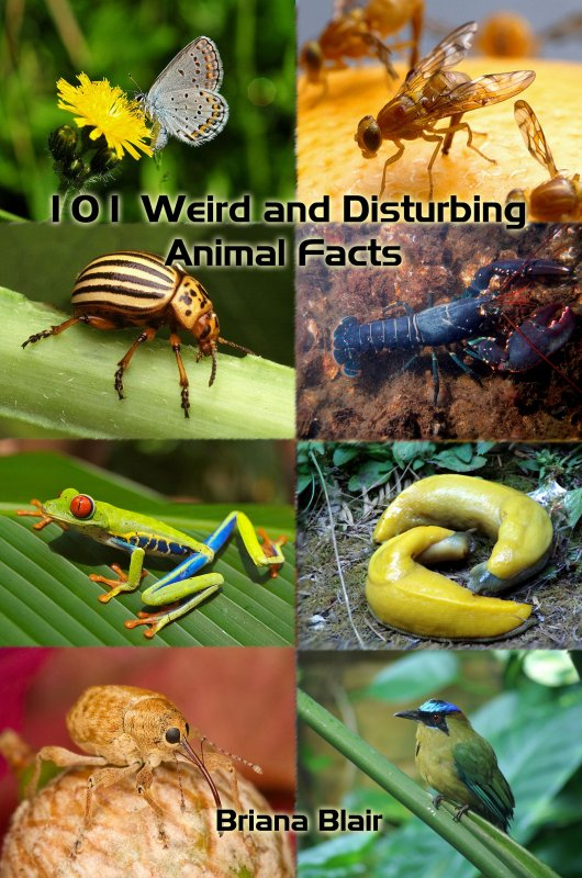 101 Weird and Disturbing Animal Facts by Briana Blair - Nature Ebook