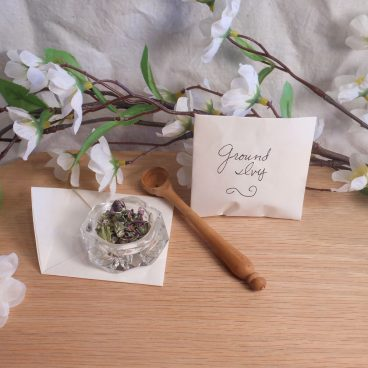 Ground ivy herb spells ritual pagan wiccan magic