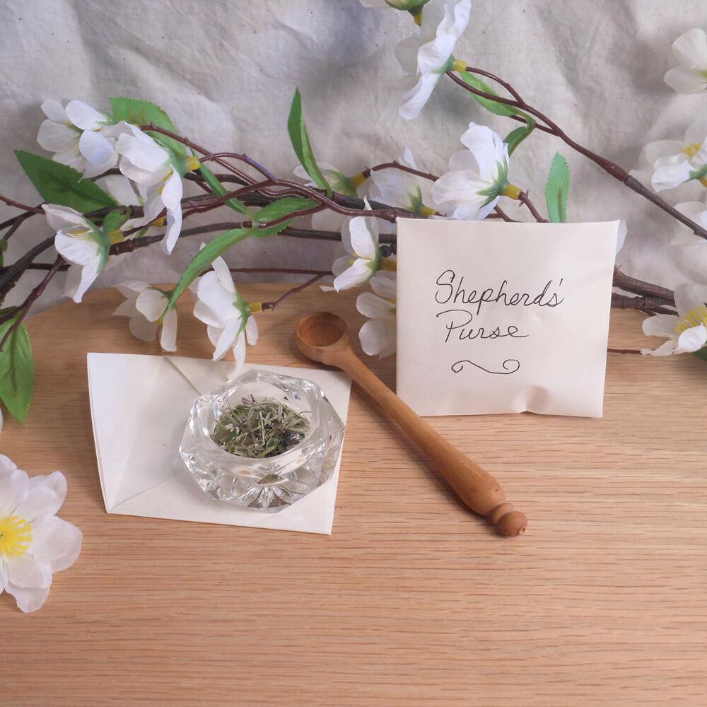 shepherd's purse herb spells ritual pagan wiccan magic