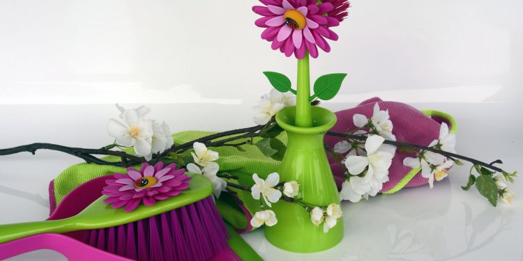 cleaning supplies pretty brush flowers