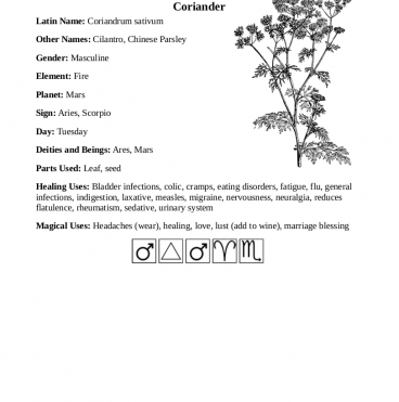 common kitchen herbs book preview 2