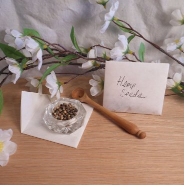 hemp cannabis sativa seeds herb spells ritual magic pagan wiccan