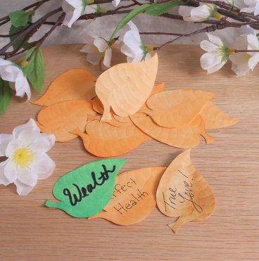Wishing Leaves Orange Elements for Spells Rituals