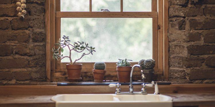 window plants room kitchen