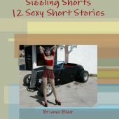 Sizzling Shorts – 12 Sexy Short Stories